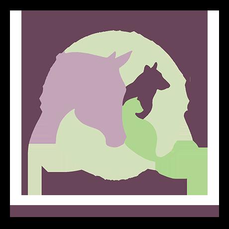 World Animal Reiki Day February 5th